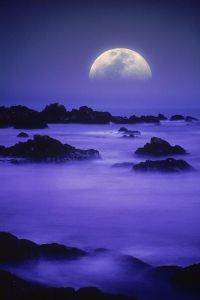 setting moon Pacific fog